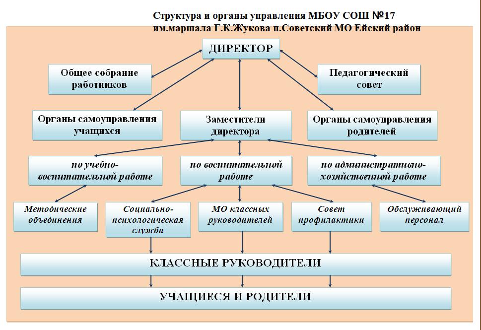 Особенности управления общеобразовательной организацией
